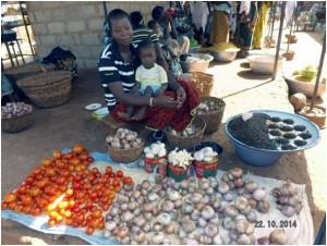 Vergabe von Mikrokrediten